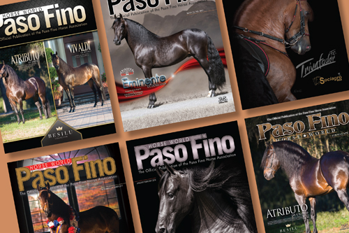 Paso Fino Horse World Magazine